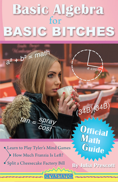 Basic Algebra for Basic Bitches