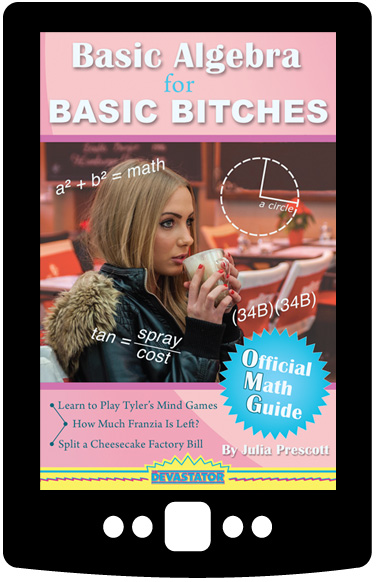 Basic Algebra for Basic Bitches (Digital Book)